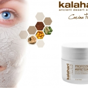Månadens behandling - Phytic Clay Mask